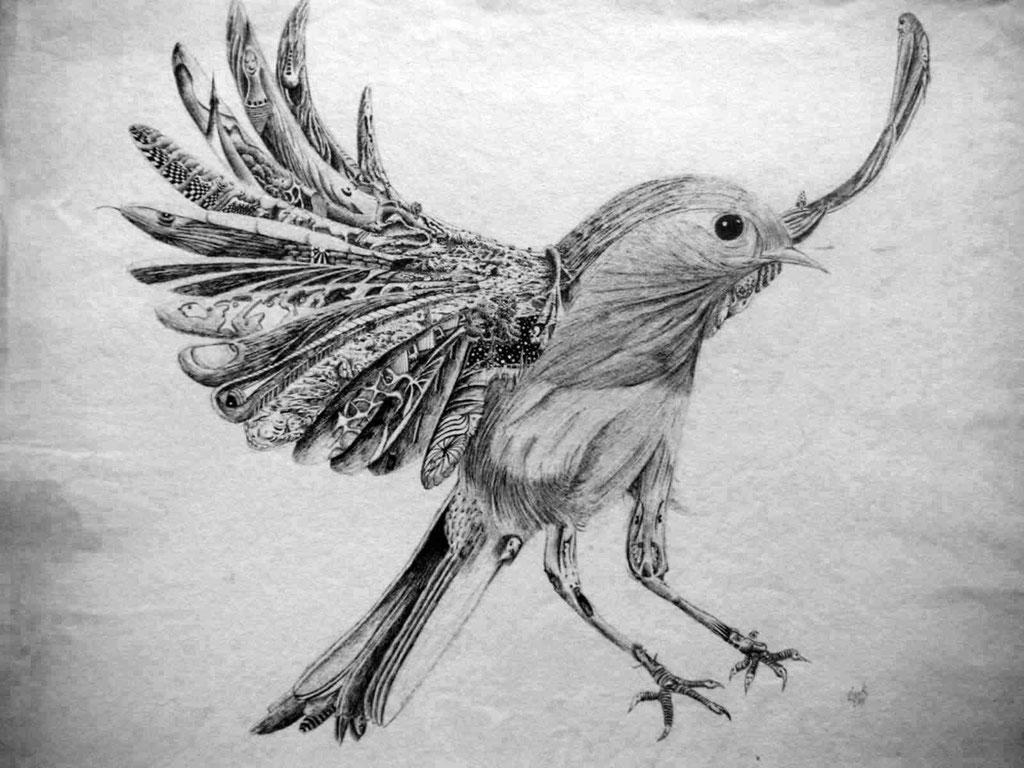 L'oiseau 1975