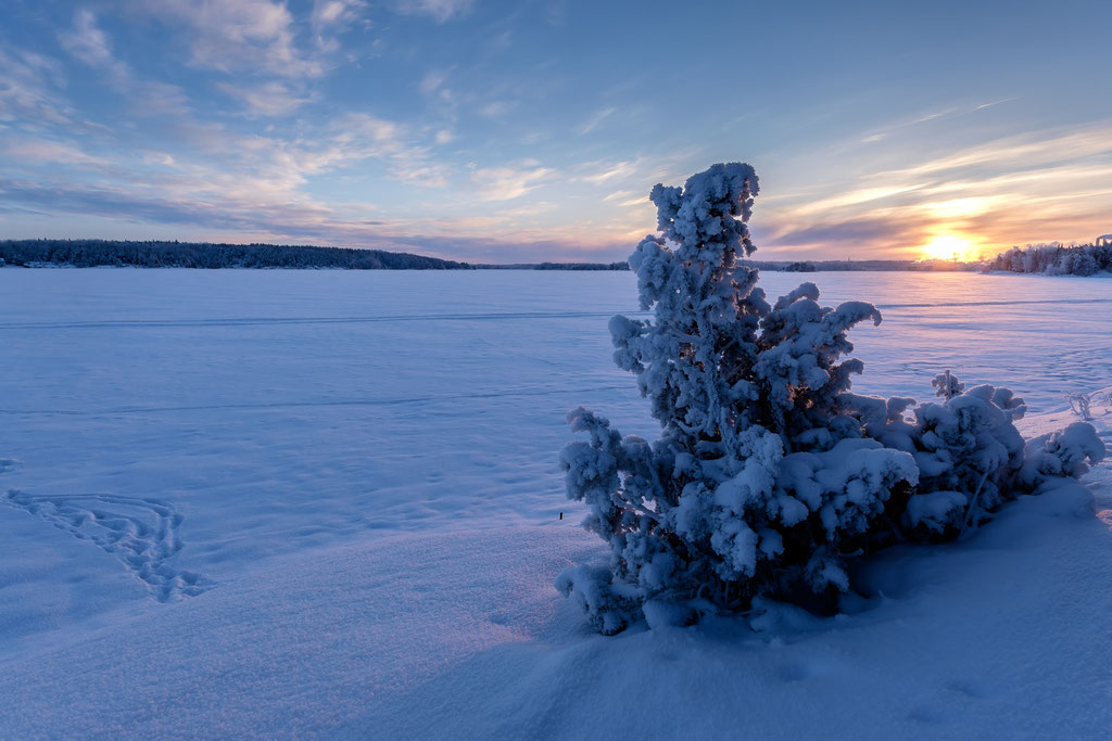 Winter am Saimaa-See I