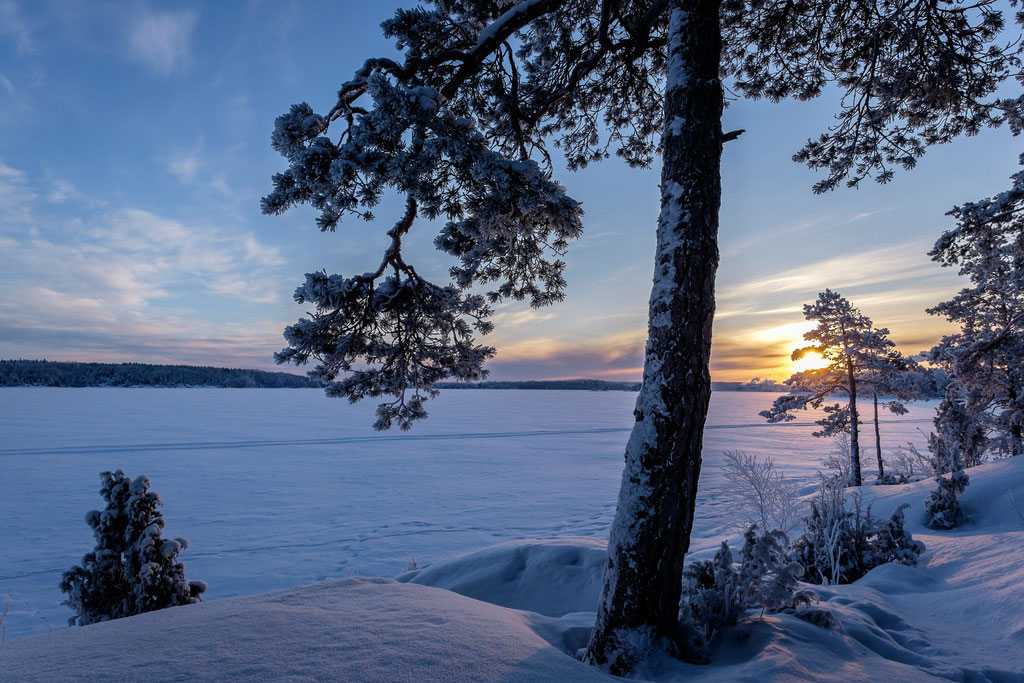 Winter am Saimaa-See II