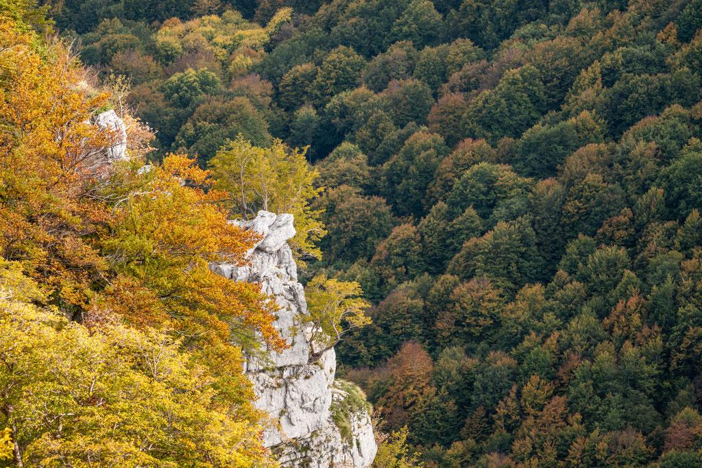 Canyon nahe Lago Vivo von Barrèa aus