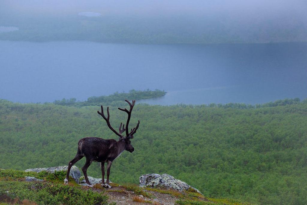 Bei Kilpisjärvi