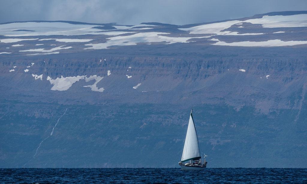 Hornstrandir, Vestfirðir