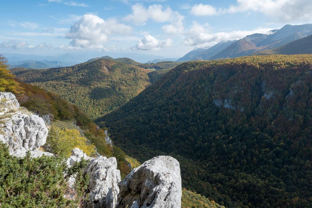 Da wandert man ganz arglos durch dichte buchenwälder und plötzlich steht man an einem gewaltigen Canyon... (nahe Lago Vivo)