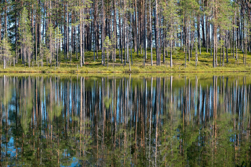 Reflektionen in Hossa, Finnlands jüngstem Nationalpark