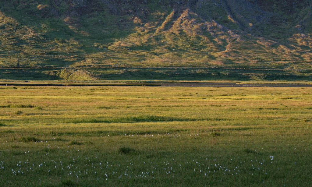 Vestfirðir Westfjorde