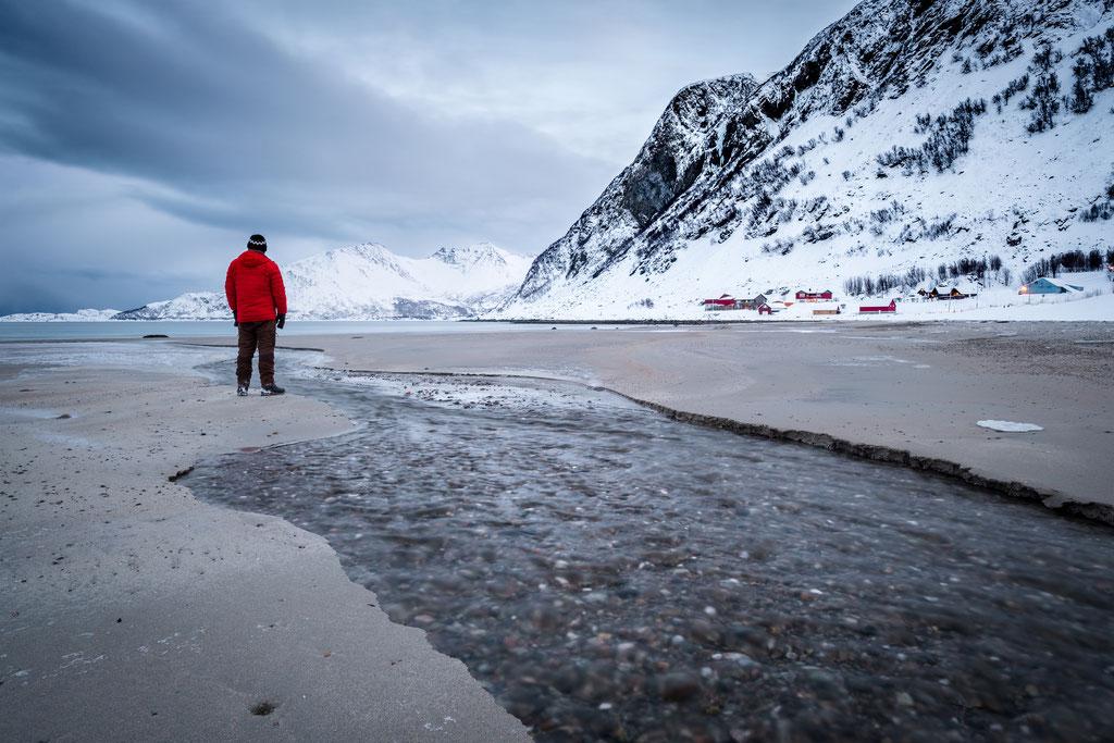 Sander am Grøtfjord mit Daunenjacke