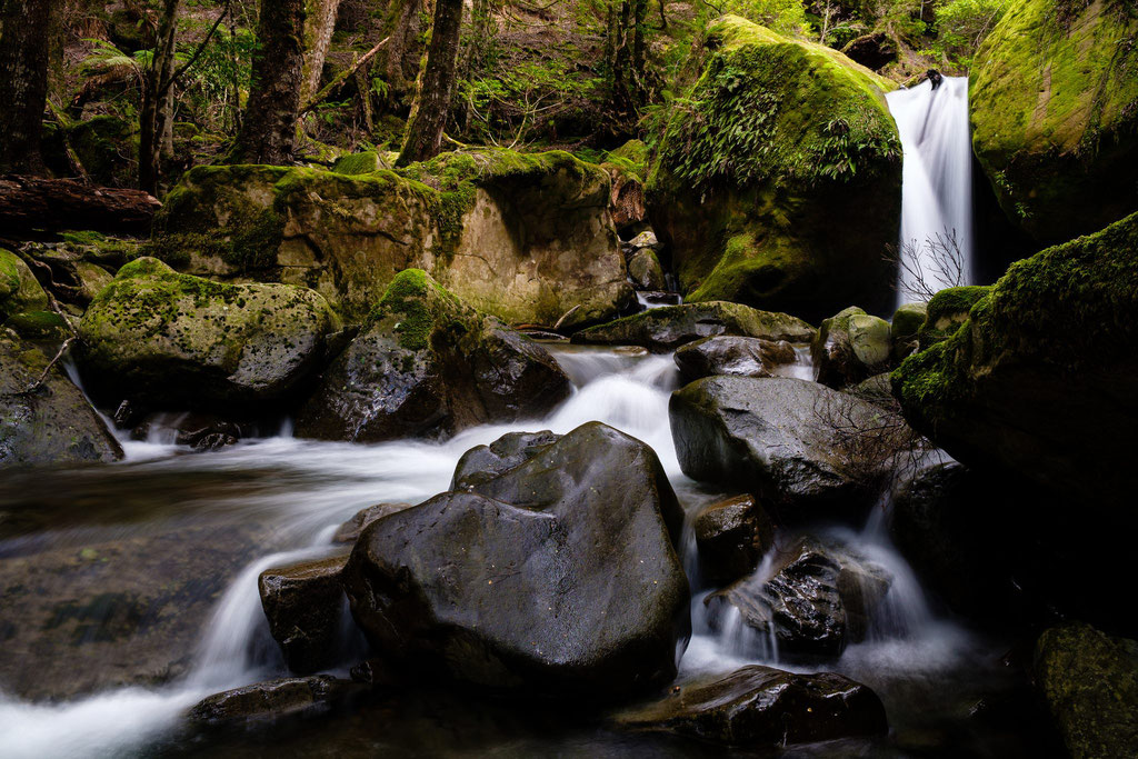 Lower Chasm Falls, Meander Forest Reserve