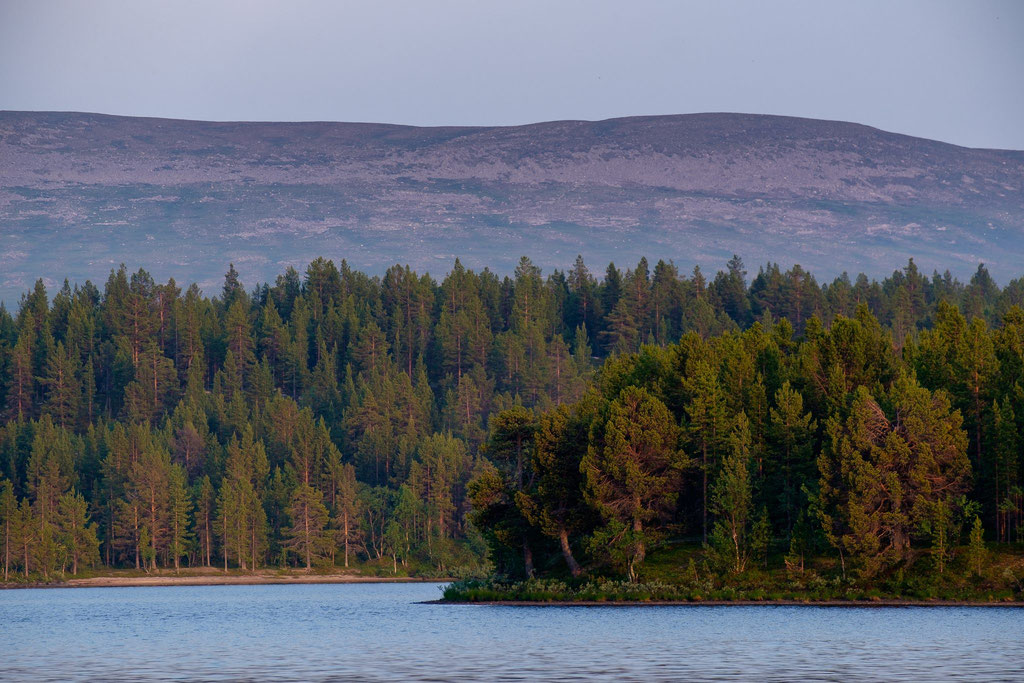 Landschaft in Lappland