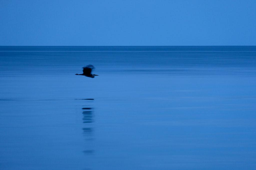 Blaue Stunde am Weißenhäuser Strand