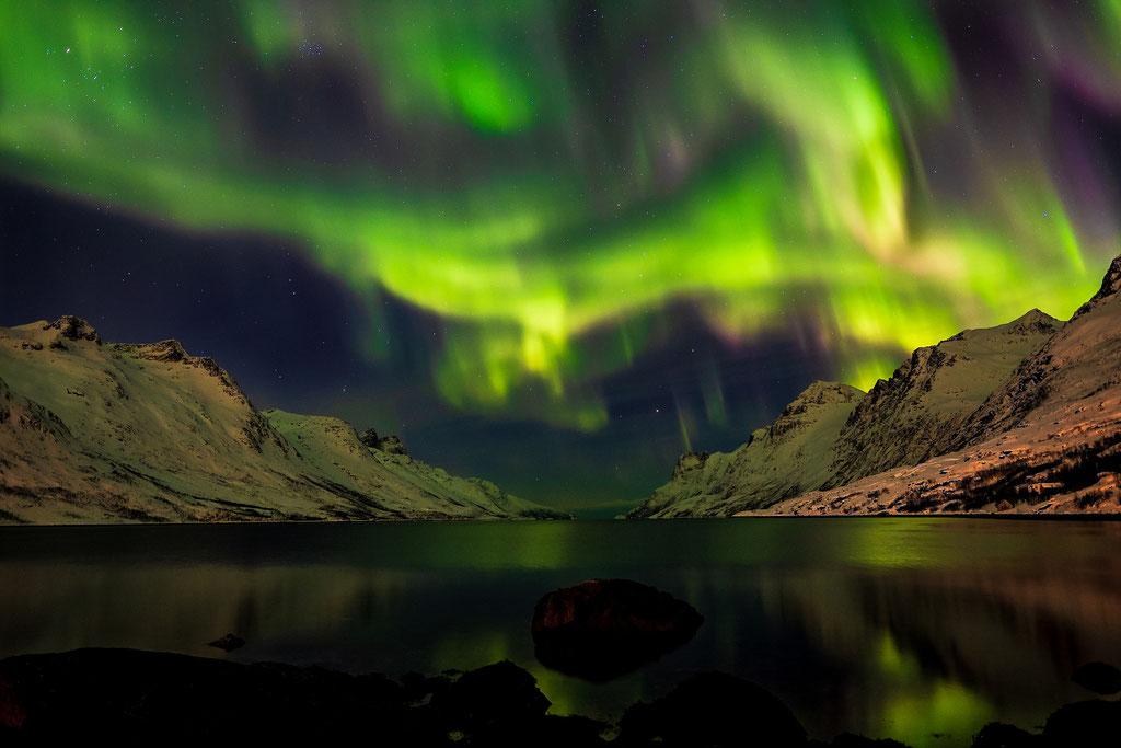 Polarlichtsturm über dem Ersfjord, Kvaløya