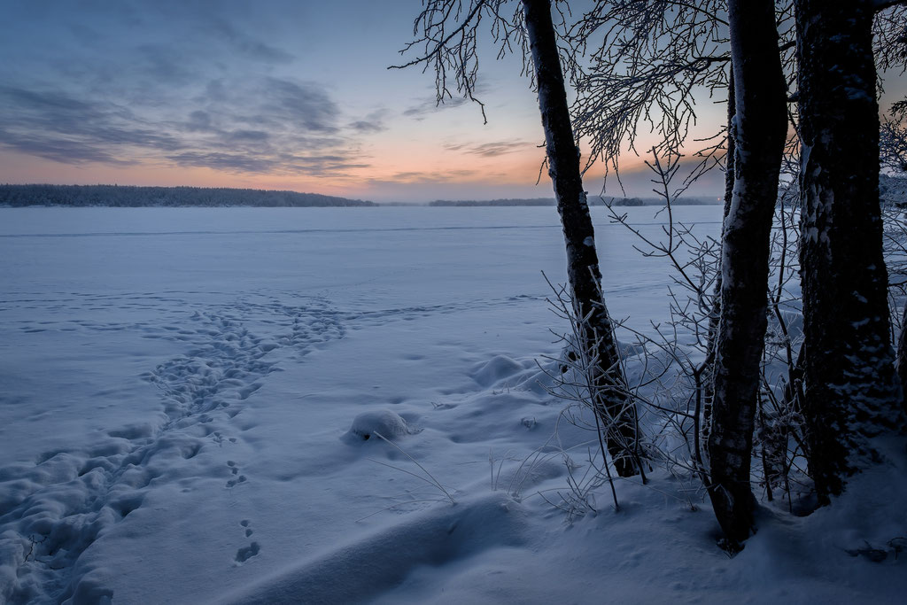 Winter am Saimaa-See III