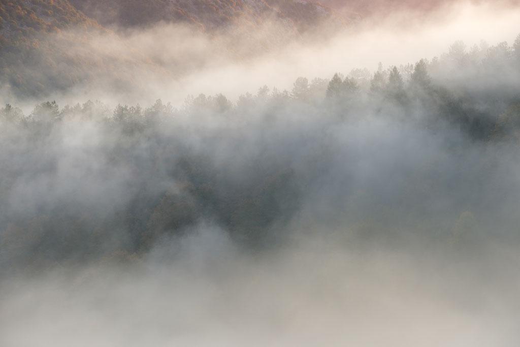 Wallende Morgennebel nahe Opi - von hinten strahlt die Morgenröte durch