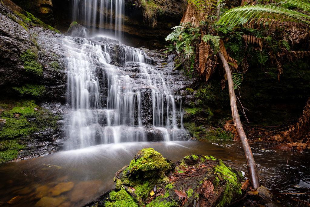Shower Falls, Tasman National Park