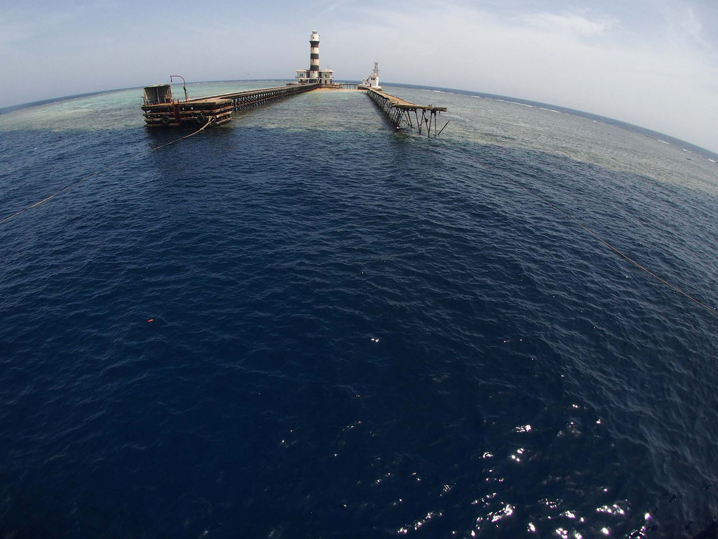 Daedalus Reef, Rotes Meer