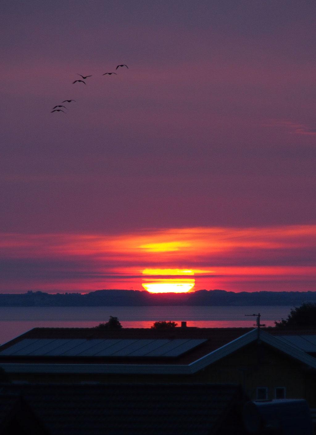 Sonnenaufgang bei Nordborg, Dänemark