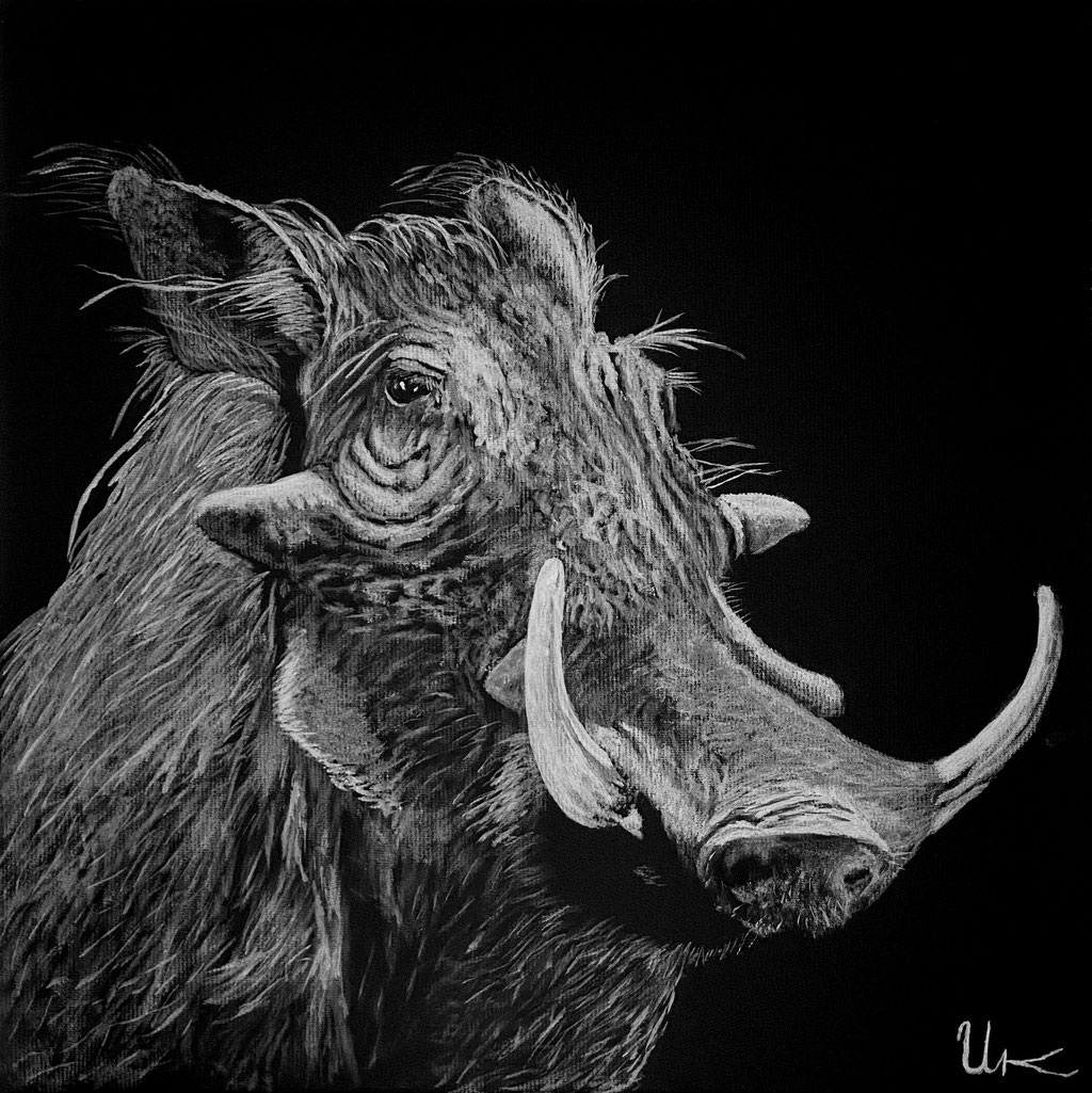 Pumba, 30x30 cm