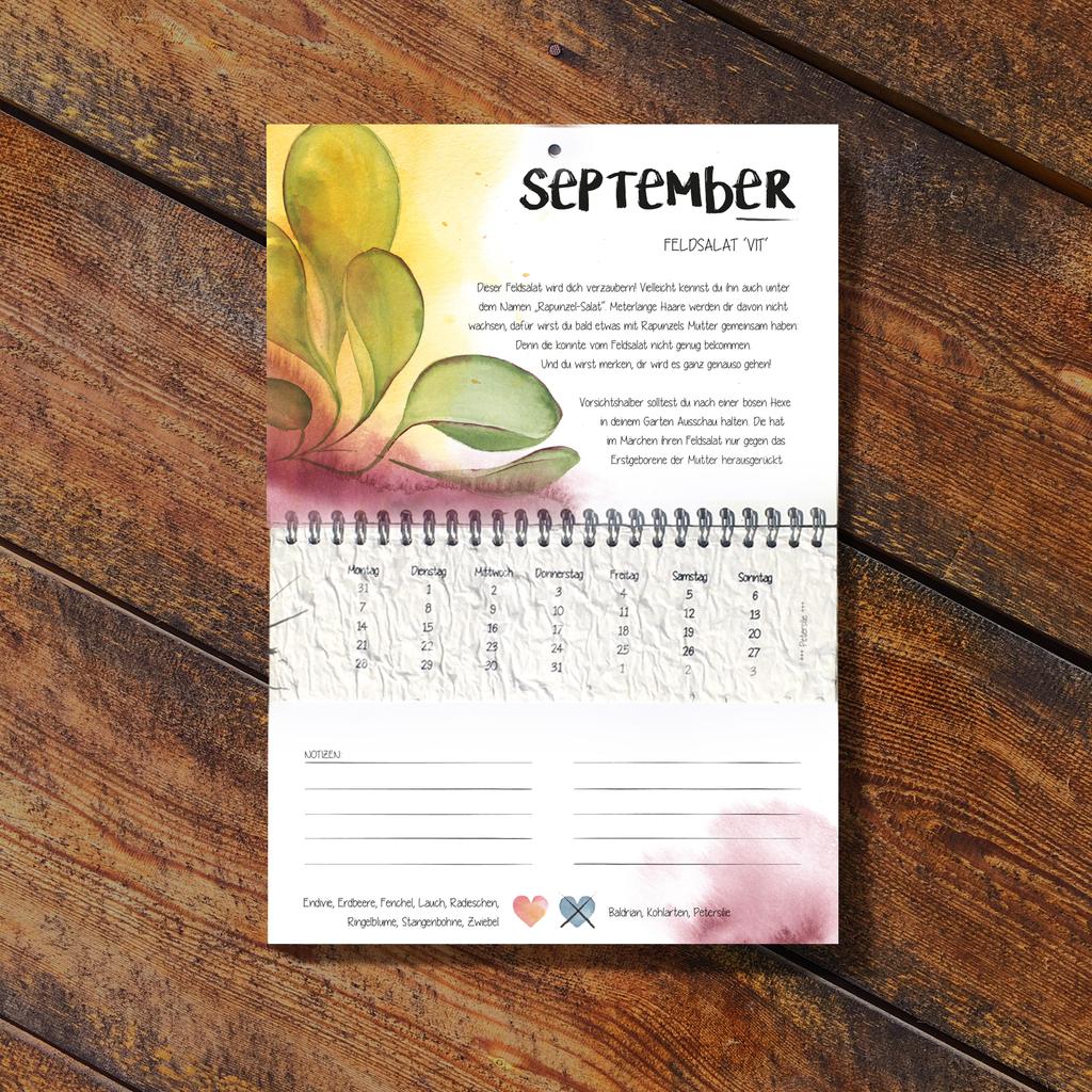 Der Wachsende Kalender 2022 Vergessene Sorten mit einpflanzbarem Samenpapier beinhaltet im Monat September meinen persönlichen Liebling in diesem Kalender, den Feldsalat 'VIT'.