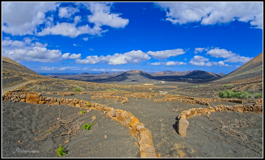 Bodegas / Lanzarote
