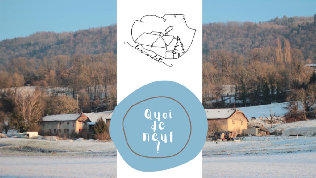 Newsletter #29 : janvier 2021