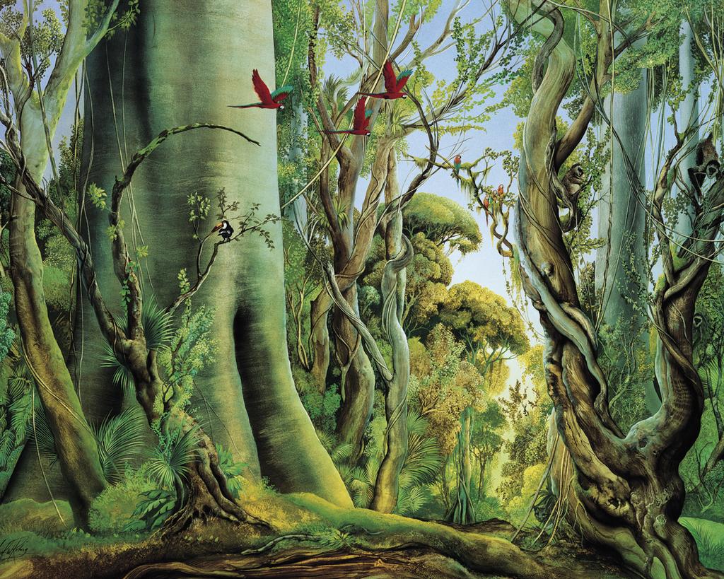 Wald der Aras - Carl-W. Röhrig