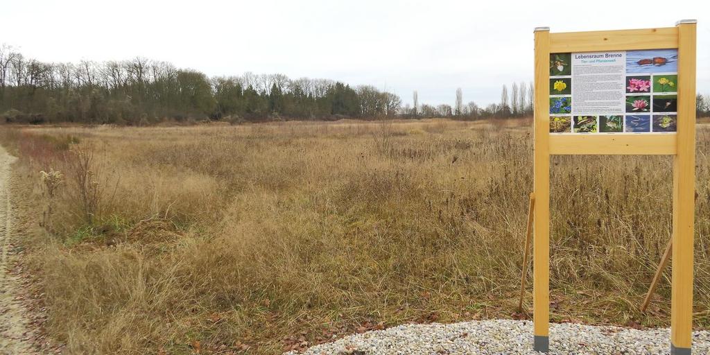 Biotop Brandstadel mit einer der Informationstafeln über den Lebensraum Brenne