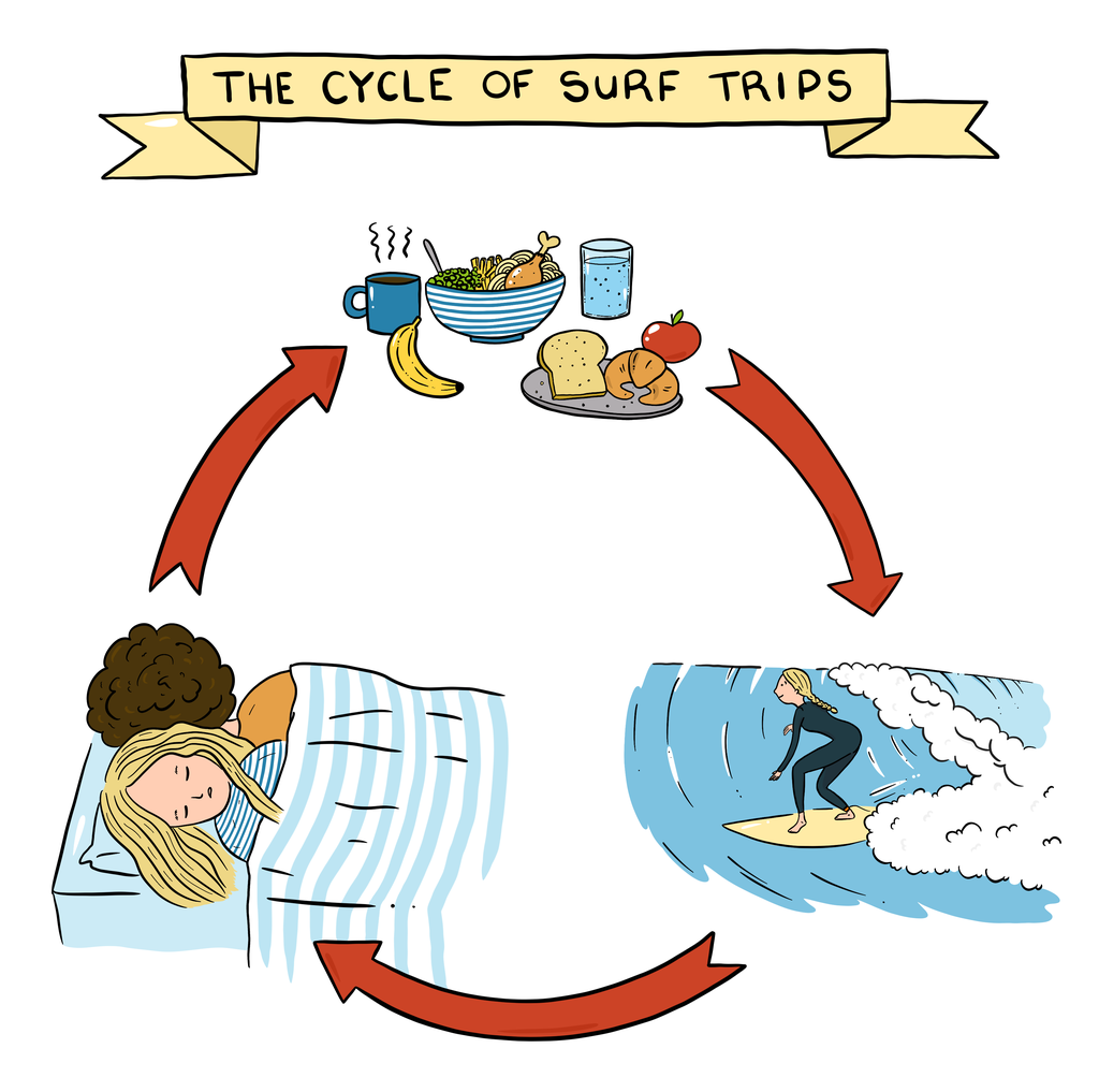 Cycle of surf trips