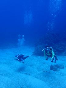 石垣島でのんびりダイビング「東海岸エリア」ヒートハートクラブ