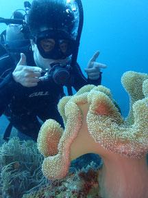 石垣島でのんびりダイビング「ソフトコーラルの群生地」ヒートハートクラブ
