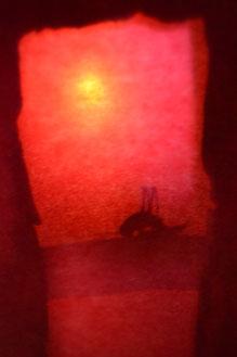 Das Schattenspiel | 30 cm x 40 cm | Digitalfotografie (meditative Fotografie) | 2017