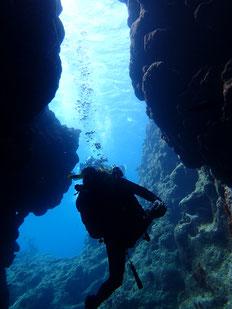 石垣島でのんびりダイビング「スーパー透明度」ヒートハートクラブ
