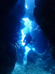 石垣島でのんびりダイビング「のんびり2ダイブ」ヒートハートクラブ