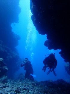 石垣島でのんびりダイビング「リフレッシュしながら」ヒートハートクラブ