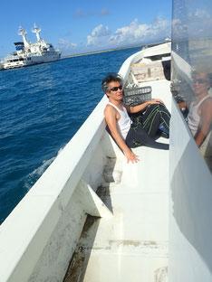 石垣島でのんびりダイビング「また台風発生」ヒートハートクラブ