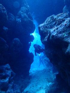 石垣島でのんびりダイビング「30年ブランク」ヒートハートクラブ