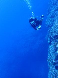 石垣島でのんびりダイビング「ドロップオフ」ヒートハートクラブ