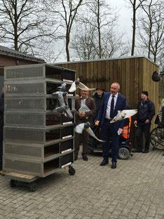 Wethouder Albert Smit van Assen laat duiven los bij de opening van het nieuwe postduivencentrum.