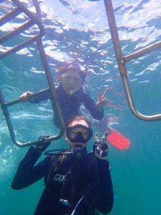 石垣島でのんびりダイビング&シュノーケリング「親子でのんびり」ヒートハートクラブ