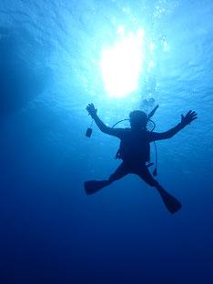 石垣島でのんびりダイビング「やっと初日の出」ヒートハートクラブ