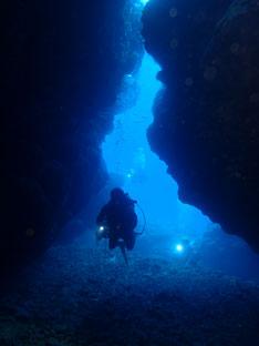 石垣島でのんびりダイビング「2020初潜りは」ヒートハートクラブ