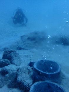 石垣島でのんびりダイビング「海底温泉」ヒートハートクラブ