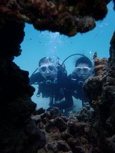 石垣島でのんびり体験ダイビング「誕生月ダイブ」ヒートハートクラブ