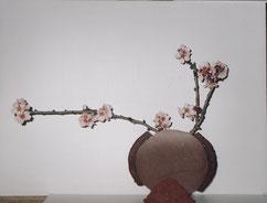 Ikebana terres crues - Caco -
