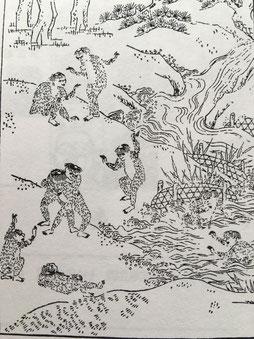 『日本山海名物図会』宝暦4年(1754年)兵庫県立歴史博物館蔵 河童の画