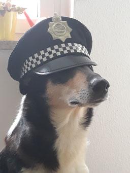 Ein Portraitfoto von Blade. Er trägt eine Karnevals-Polizeimütze der US-Polizei, die ihm tief in die Augen hängt.