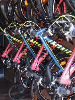 Foto - Fahhräder hängen im Fahrradlager