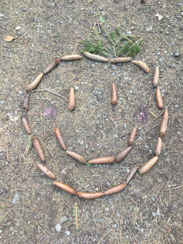 Fundstücke aus der Natur
