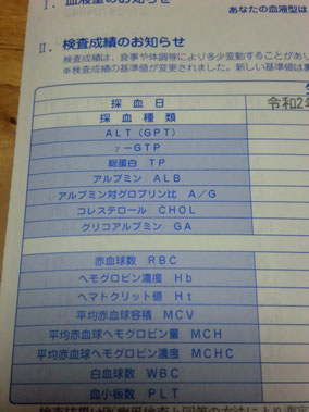 血液検査項目