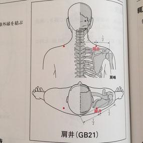 ▲妊娠中、注意すべき経穴の1つ「肩井」(『WHO/WPRO標準経穴部位』より)