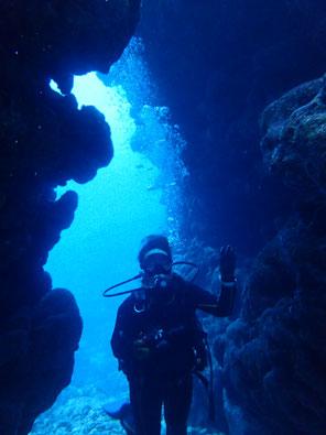 石垣島でのんびりダイビング「半日ダイブ」ヒートハートクラブ