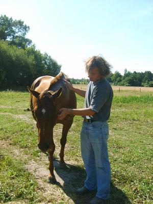 Mieux se connaitre par la relation avec le cheval.
